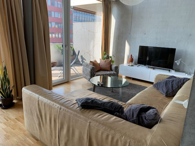Spacious 4.5 room apartment near airport & ZH City