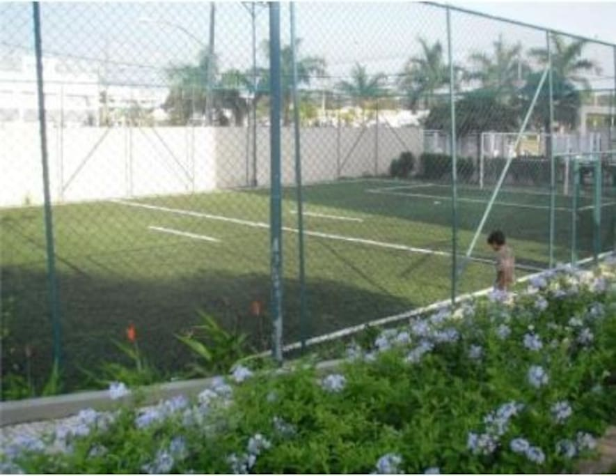 Soccer grass court