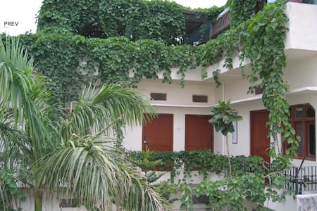 atithi guest house camel fair  - Pushkar - Bed & Breakfast