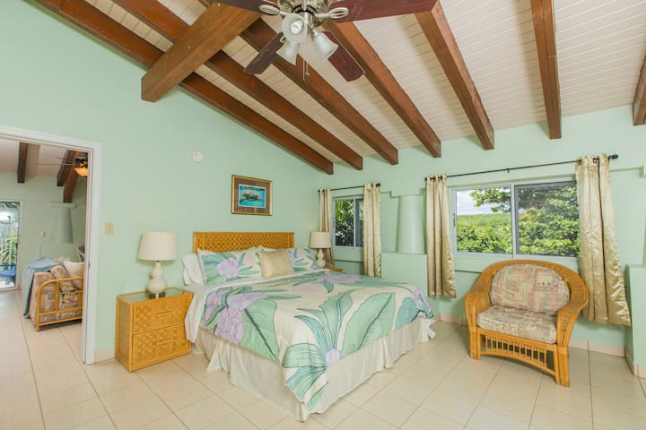 """HBH Frangipani Suite > Spacious bedroom > King size bed > Island views  > 40"""" LED Wifi/Smart TV"""