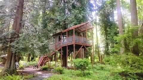 Baumhaus ~ Whidbey Island, Washington