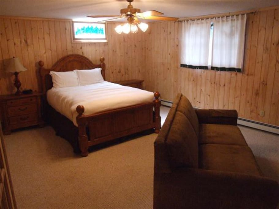 Basement bedroom with a pull out sofa sleeper and fireplace.