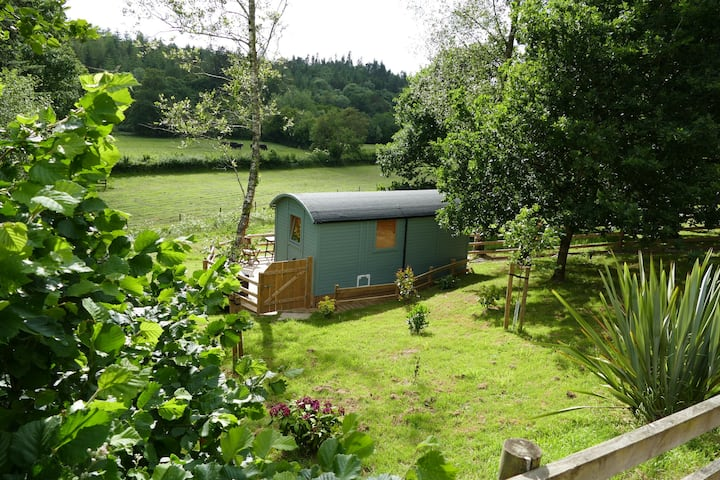 Cosy self-contained shepherd's hut near Dolton