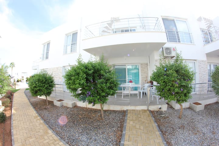 Beautiful One Bed room apartment 50m from Sea