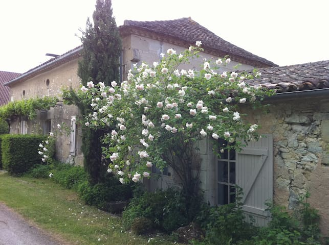 La Maison des Ecureuils - Montauriol - Casa