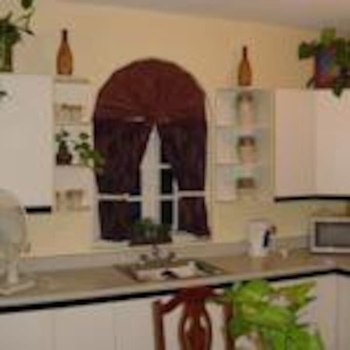 Kitchenette with stove, refrigerator, microwave etc.