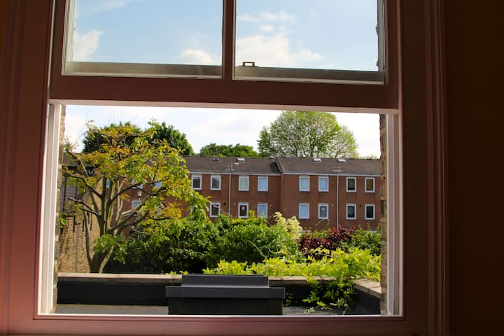 View from the guest room window