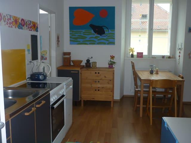 gemütliche Wohnung in Krems - Krems an der Donau - Apartment