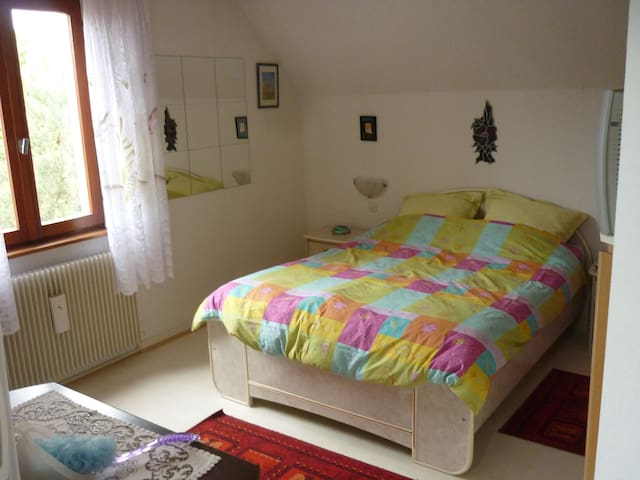 Chambre chez l'habitant Strasbourg - Fegersheim - Casa