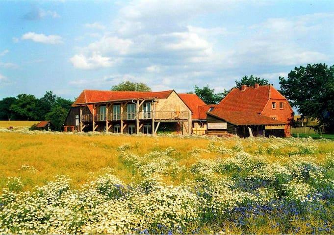 Zimmer mit Ausblick (Müritz, 7 km) - Wredenhagen - Другое
