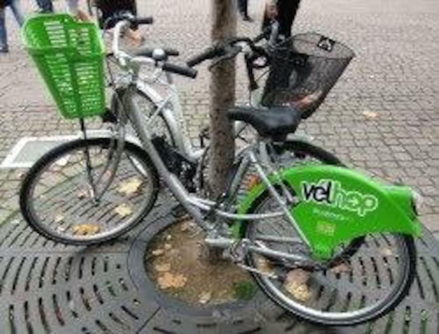 Velop : Une solution pour découvrir Strasbourg