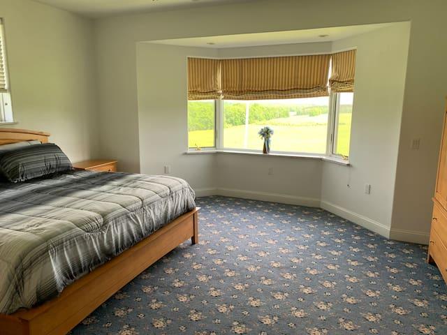 Master king size bedroom 1