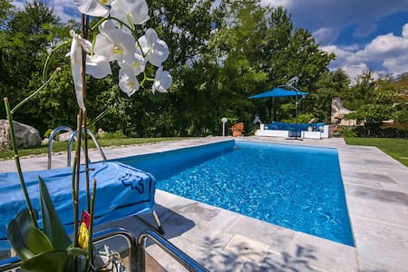Villa Rupena with swimming pool - Buzet