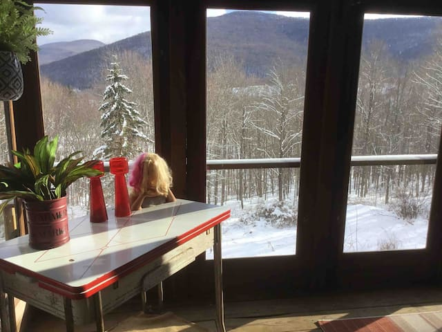 Charming Catskills log home close to ski resorts