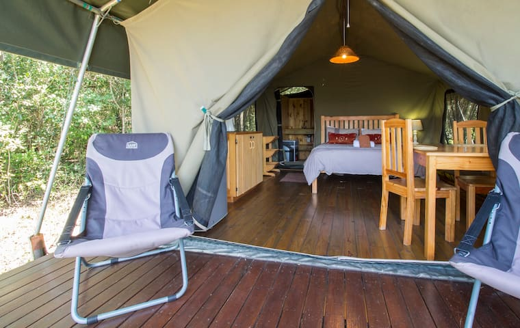 Luxury Safari Tented Lodge