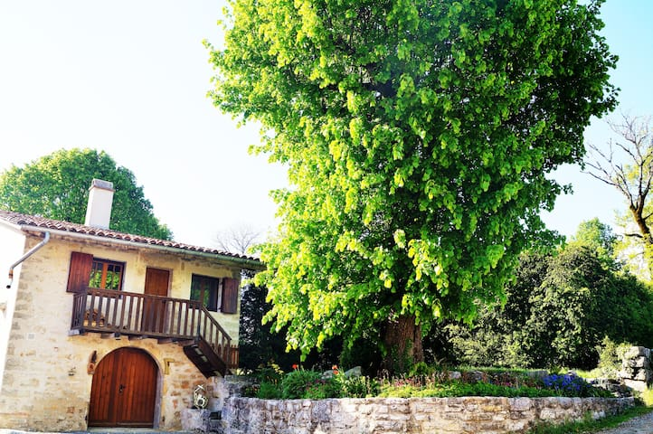 Maison Atypique au Calme - Ceignes - Casa