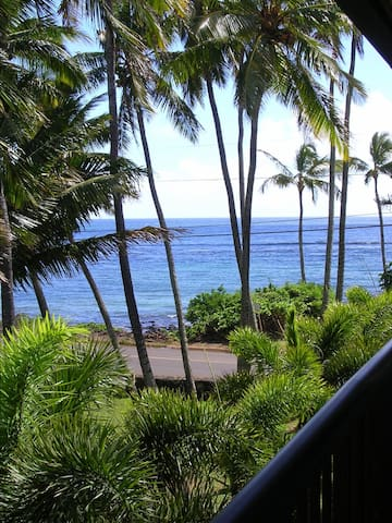 Super Ocean View Prince Kuhio #306 - Koloa - Apartamento