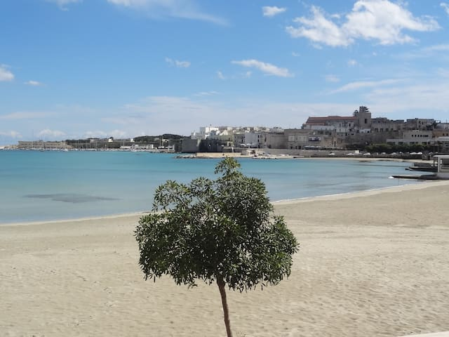 Bellissimo, attraversi la strada e sei in spiaggia - Otranto - Apartment