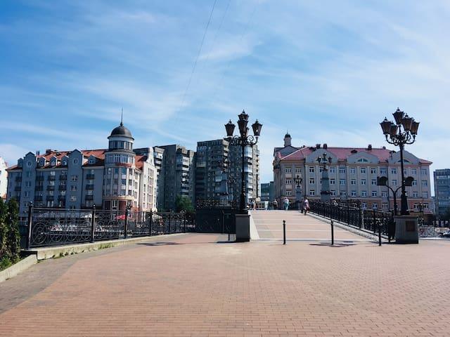 У Юбилейного Моста (Königsberger Dom)