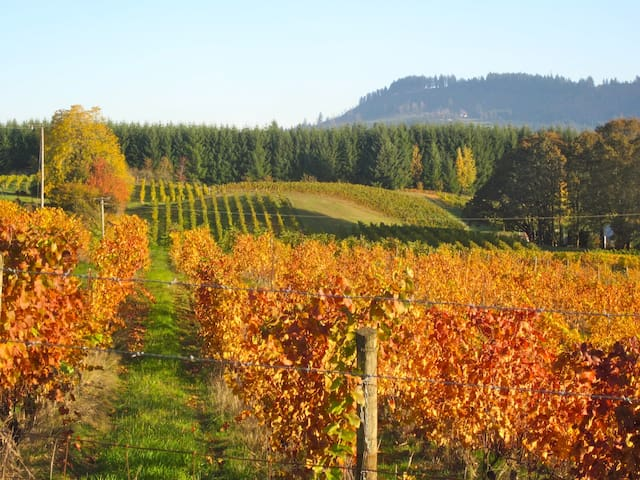 Healing Horse Farm - Walk to 6 Wineries! - Newberg - Apartment