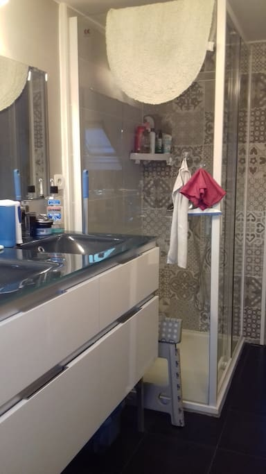 Douche et lavabo double vasque