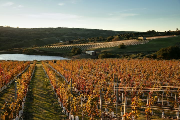 Sacromonte - Vineyard retreat and wild nature