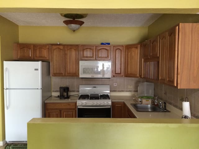 Spacious 2 bedroom with parking - Kingston - Casa