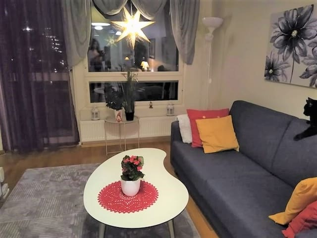 New spacious flat in central Helsinki with 2 cats