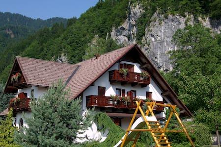 Nice family guesthouse near Bled.. - Bohinjska Bela - Aamiaismajoitus