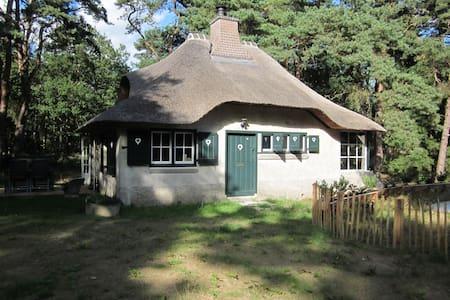 Nostalgisch huisje  in het bos - Zeegse