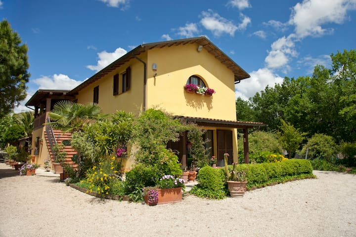Ampia camera in B&B Piceno - Castel di Lama - Bed & Breakfast