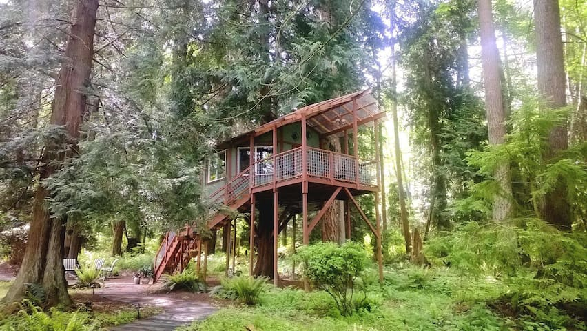 Tree House on Whidbey Island, WA