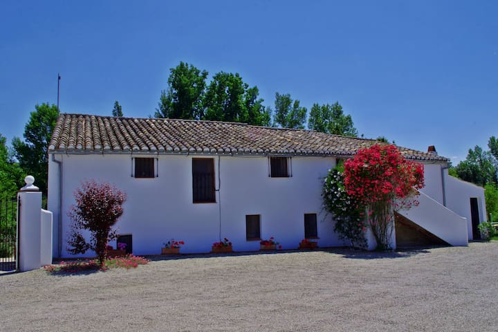 Lovely 3 bed Farmhouse Apartment near Ronda - Ronda - Lägenhet