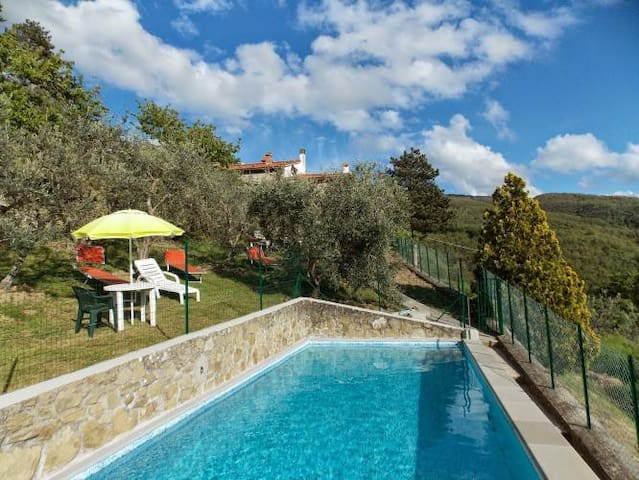 Detached home with pool, scenic and quiet location - Londa (FI) - House
