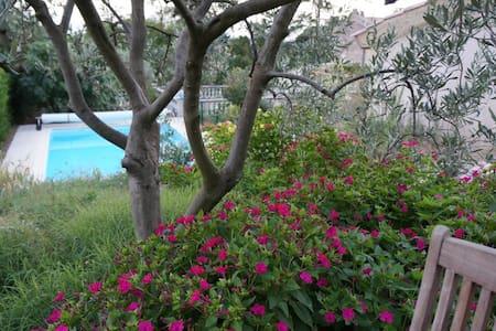 Studio avec piscine et jardin  - Beaumes-de-Venise - Дом