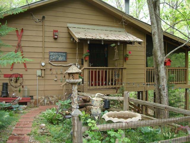 Hiker's Dream Cabin-Claw Foot Tub! - Blue Ridge - House