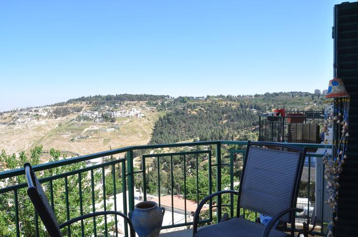 beautiful apart in Abu Tor, Jerusal