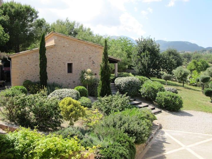 XVI estate nr Palma, ROMANI