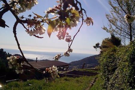 OrganicFarm  entre mer et montagne - Gorbio