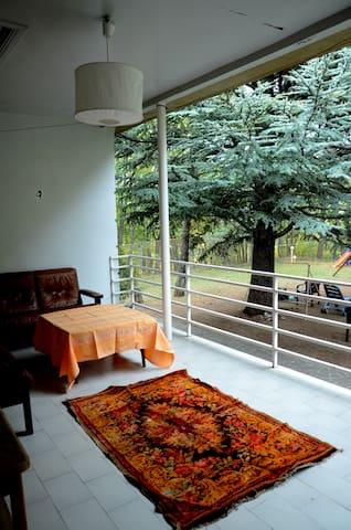 The best house near Tbilisi - Tskneti - Huis
