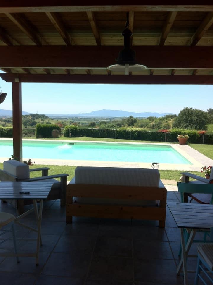 Toscana maremma mare calendula