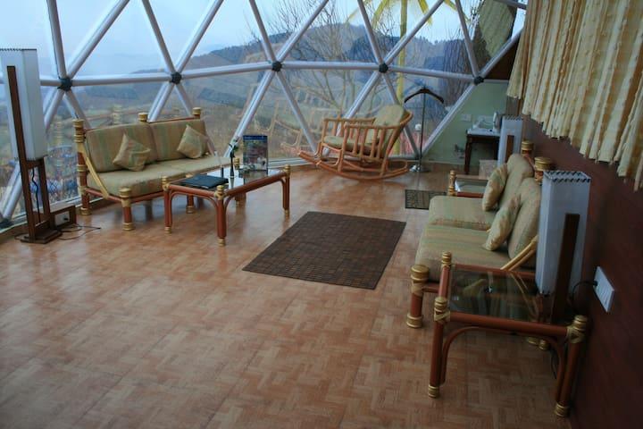 Jungle Meadows Glass Cottage - Chail - Butik otel