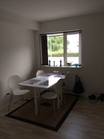 Lovely apartment located in Viborg City!! - Viborg