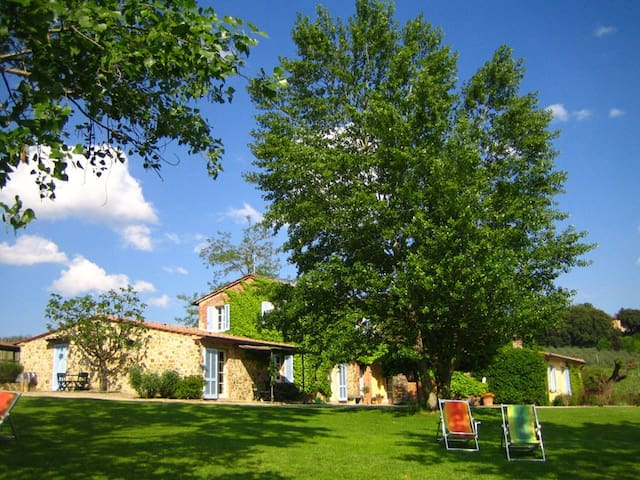 Charmin Tuscan old farm apartment - pozzo della chiana - Leilighet