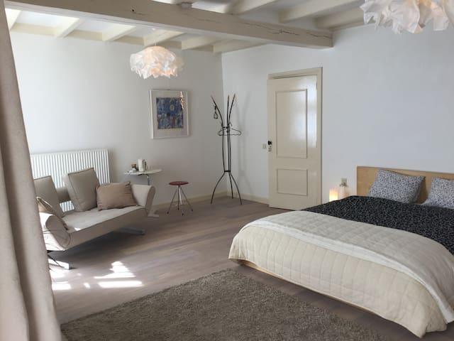 Ruim appartement in rijksmonument - Doesburg - Stadswoning