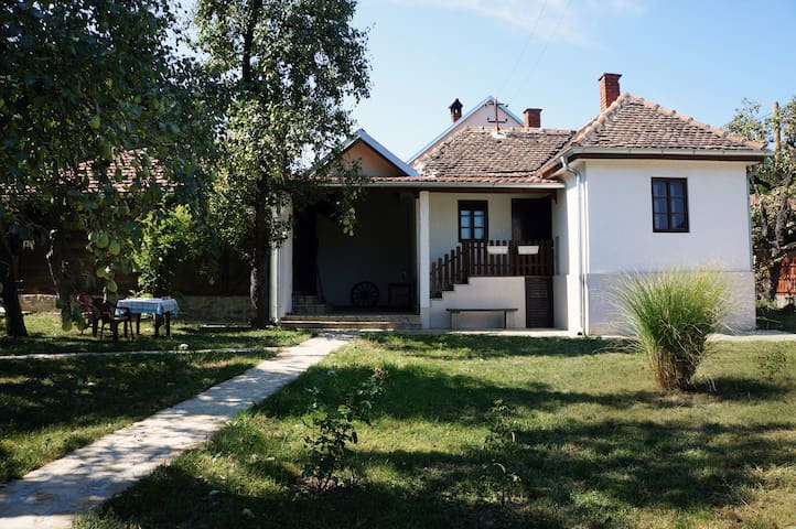 Etno house in the heart of Serbia
