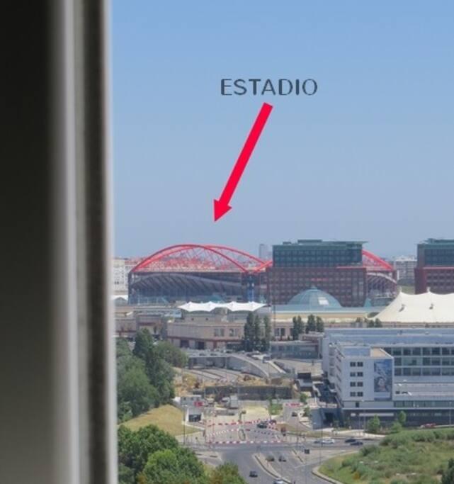 la vista desde la ventana -