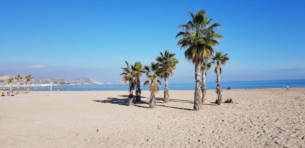 Vistas al mar en la playa de Alicante