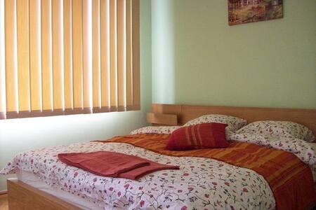 Central Private Apartment SP - Bucharest - Leilighet