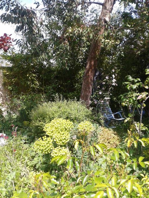 Ombre et soleil au jardin